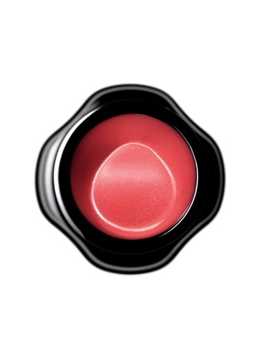 Shiseido Perfect Rouge Rs320 Renkli
